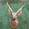 hand-carved-deer-head