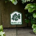 parsley-herb-sign