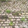 reclaimed-random-sized-pink-grey-granite-cobbles.2